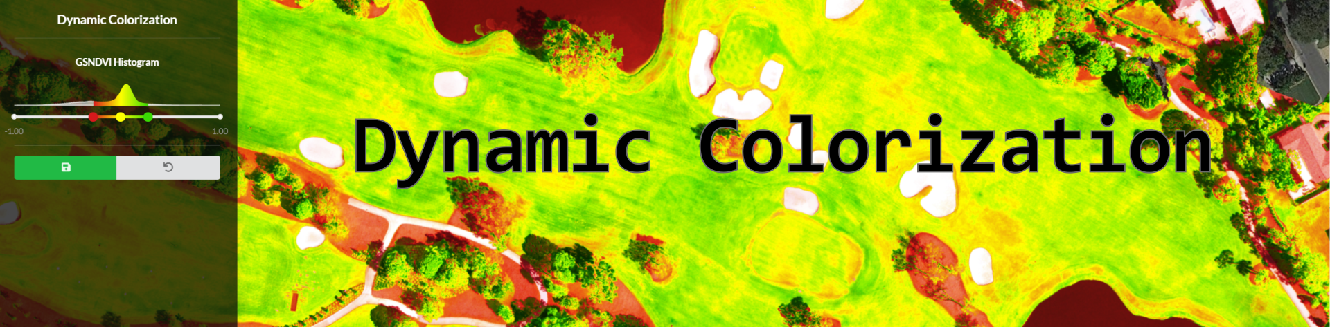 Dynamic Colorization: A Deeper Look into What it Means